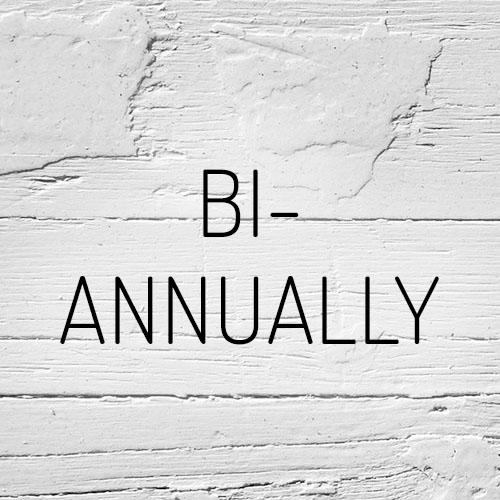 """""""Bi-Annual"""""""