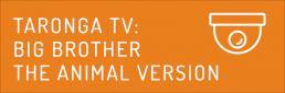 Taronga TV: Big Brother the animal version