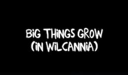 Big Things Grow (in Wilcannia)